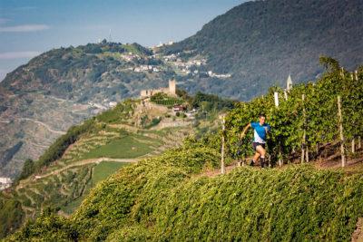 winetrail 2019 rigamonti